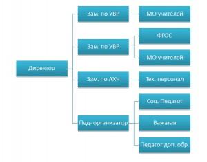 Структура и органы управление